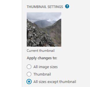 Edit image size in WordPress